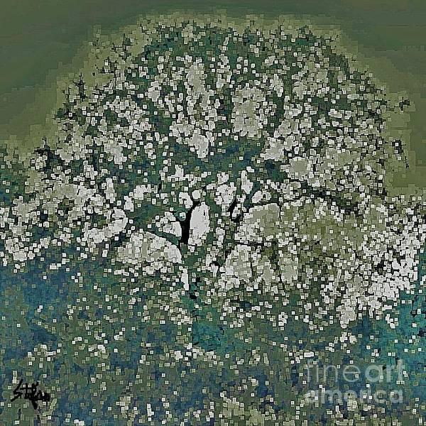 Digital Art - Tree Of Fractals by Stefan Duncan