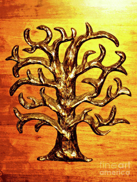 Photograph - Tree Of Life by Larry Oskin