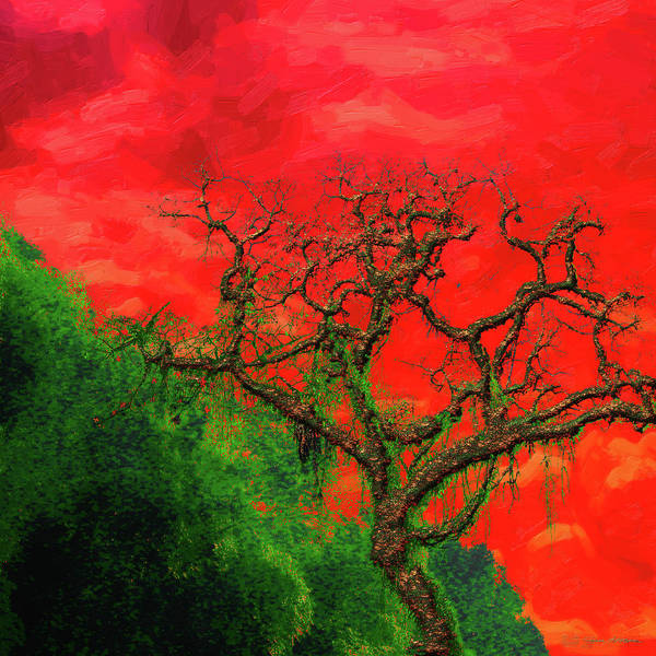 Digital Art - Tree Of Life - Red Dawn by Serge Averbukh