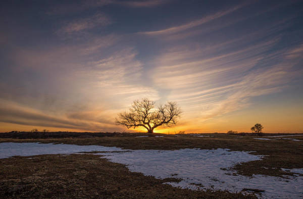 Sioux Wall Art - Photograph - Tree Of Light  by Aaron J Groen