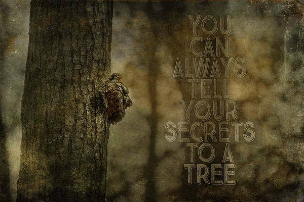 Photograph - Tree Of Secrets by Christina VanGinkel