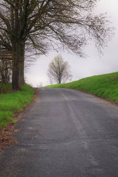 Photograph - Tree On A Hill by Tom Singleton