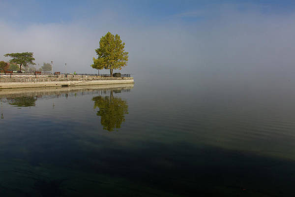 Wall Art - Photograph - Tree Reflection In The Lake On A Misty Morning by Iordanis Pallikaras
