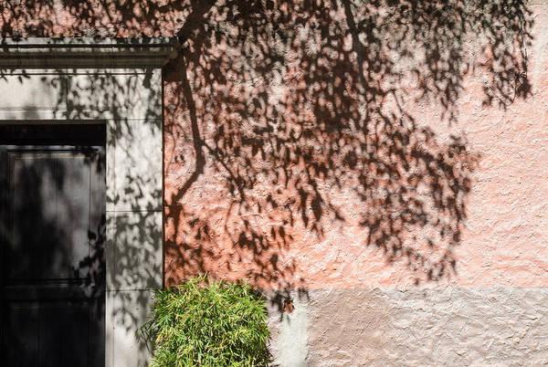 Photograph - Tree Shadows On Stucco. by Rob Huntley