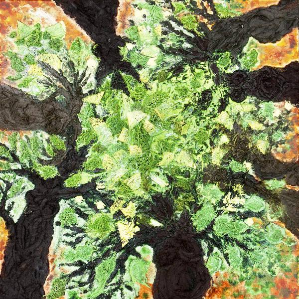 Initiation Painting - Tree Sisters by Sora Neva