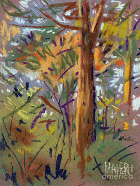 Autumn Drawing - Tree Sketch by Donald Maier