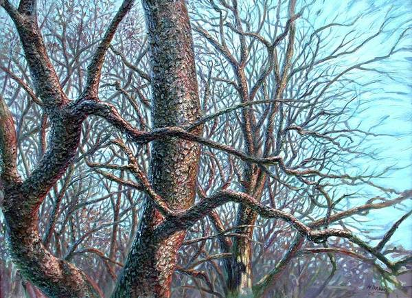 Hans Droog Wall Art - Painting - Tree Study by Hans Droog
