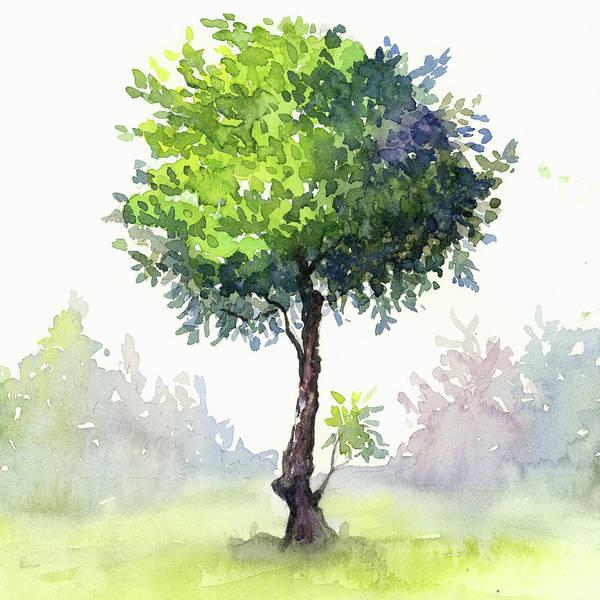 Wall Art - Painting - Tree Study by Zapista Zapista