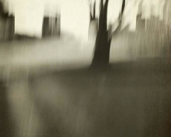 Photograph - Tree With Buildings Abstract by Patricia Strand