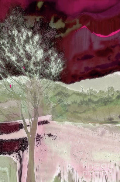 Asheville Mixed Media - Tree Witness To Lake At Dawn by Zsanan Studio