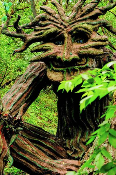 Wall Art - Photograph - Treebeard by John Straton
