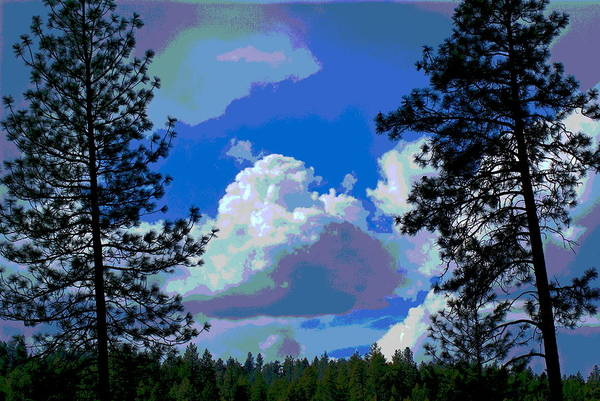 Photograph - Trees And A Cloud For Crying Out Loud by Ben Upham III