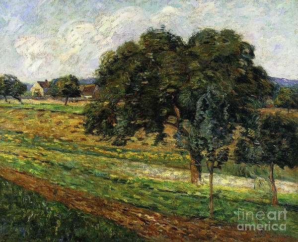 Wall Art - Painting - Trees And Flowers, Damiatte Countryside by Jean Baptiste Armand Guillaumin