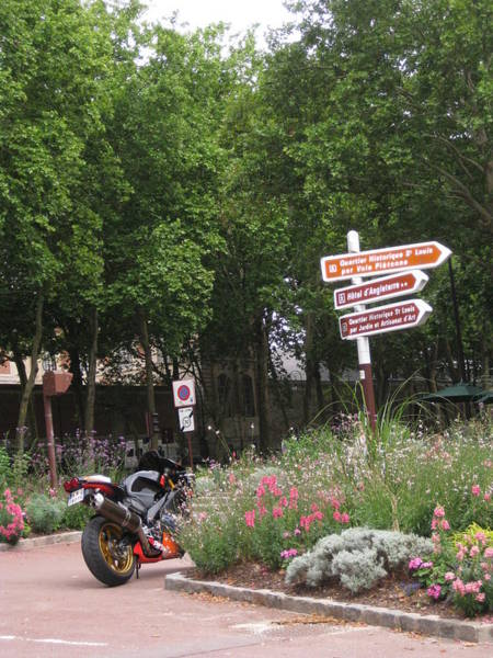Treen Photograph - Trees And Motorcycle by Diana Moya