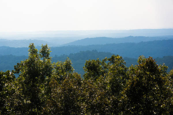 Photograph - Trees And Rolling Hills by Parker Cunningham