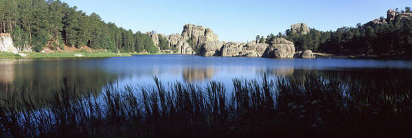 Physical Features Wall Art - Photograph - Trees Around The Lake, Sylvan Lake by Panoramic Images