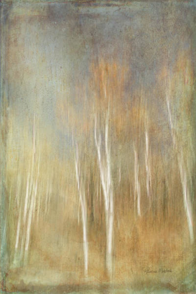 Digital Art - Trees Ethereal Grove by Ramona Murdock