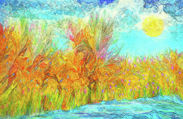 Digital Art - Trees Flow With Sky - Boulder County Colorado by Joel Bruce Wallach