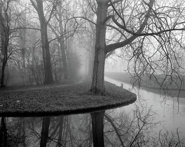 Wall Art - Photograph - Trees In Fog by Copyright Victor Schiferli