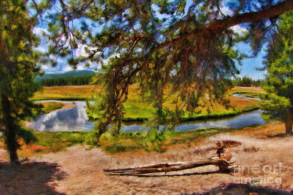Photograph - Tree's In Front Of River by Blake Richards