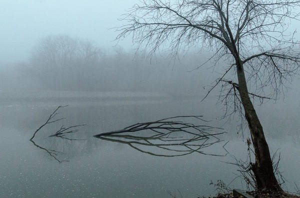 Photograph - Trees In The Fog On The River by Pete Hendley