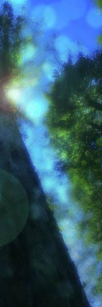 Digital Art - Trees Right by Kenneth Armand Johnson