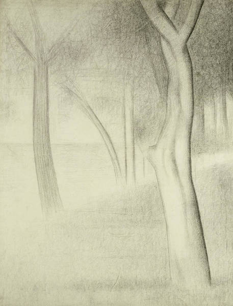 Crayon Drawing - Trees  Study For La Grande Jatte by Georges Pierre Seurat