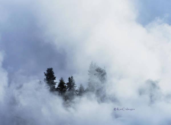 Firehole River Wall Art - Photograph - Trees Through Firehole River Mist by Kae Cheatham
