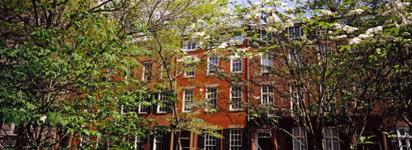 Washington Square Park Wall Art - Photograph - Trees With Buildings In The Background by Panoramic Images