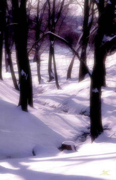 Photograph - Treescape No3 by Sam Davis Johnson