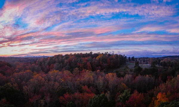 Photograph - Travelers Rest Treetop Sunset by James Richardson