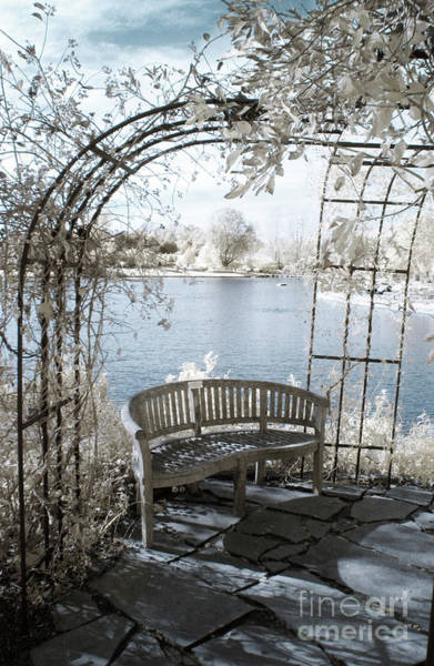 Photograph - Trellis Bench In Infrared by Crystal Nederman