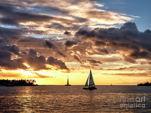 Photograph - Tres Sailboats At Sunset In Key West by John Rizzuto