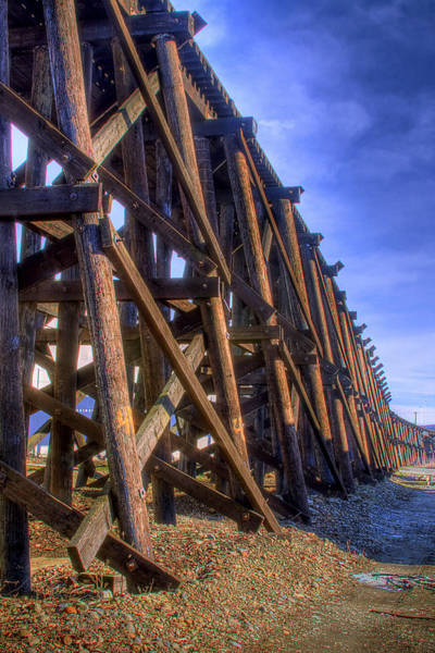 Photograph - Tressel From The West by David Patterson