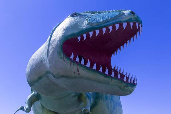 Timeworn Photograph - Trex Dinosaur by Garry Gay