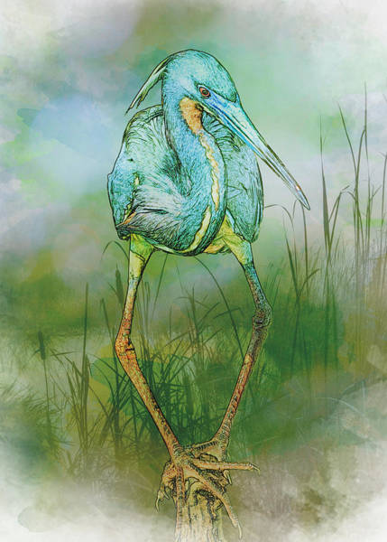 Art Print featuring the photograph Tri-colored Heron Balancing Act - Colorized by Patti Deters