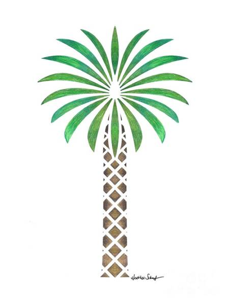 Drawing - Tribal Canary Date Palm by Heather Schaefer