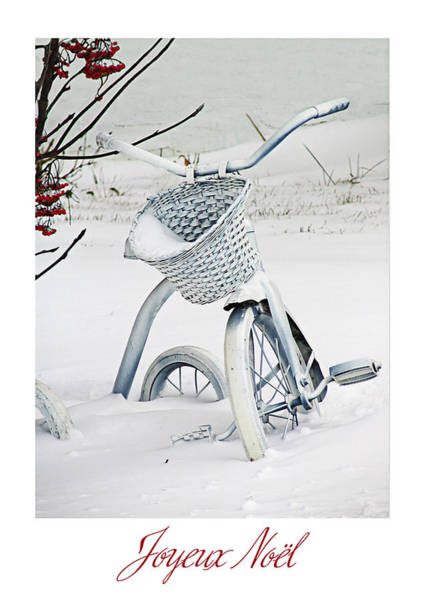 Wall Art - Photograph - Tricycle Blanc De Noel by Maggie Terlecki