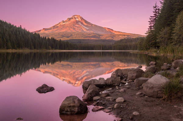 Wall Art - Photograph - Trillium Lake Tranquility  by Landon Spady
