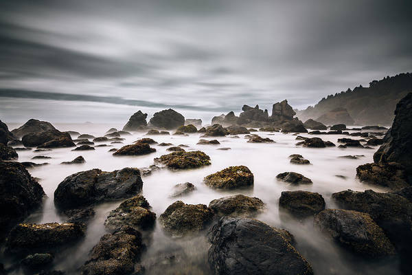 Photograph - Trinidad Seascape by Lee Harland