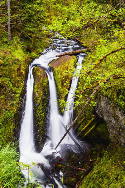 Triple Falls Photograph - Triple Falls In Columbia River Gorge Oregon by Vishwanath Bhat