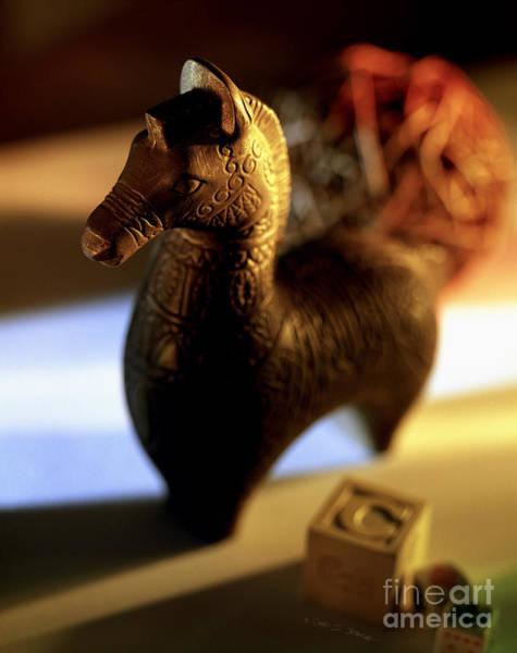 Photograph - Trojan Horse by Craig J Satterlee