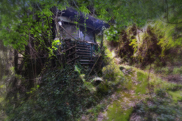 Photograph - Trolley Bus Into The Jungle by Enrico Pelos