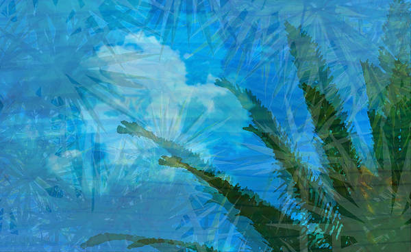Photograph - Tropical Afternoon by Susan Vineyard