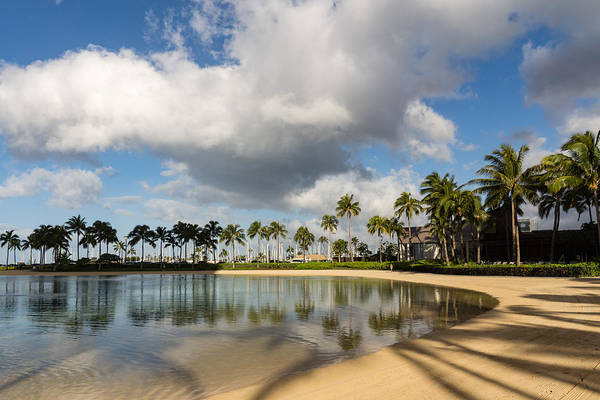 Photograph - Tropical Beach Joy - Lagoon Shadows And Reflections Of Palm Trees by Georgia Mizuleva