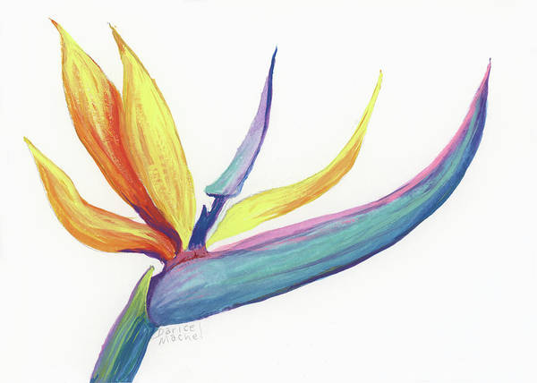 Painting - Tropical Bird Of Paradise by Darice Machel McGuire