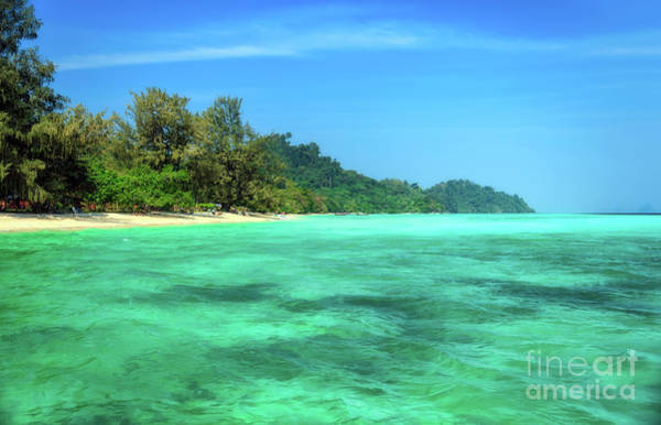 Photograph - Tropical Coast by Adrian Evans