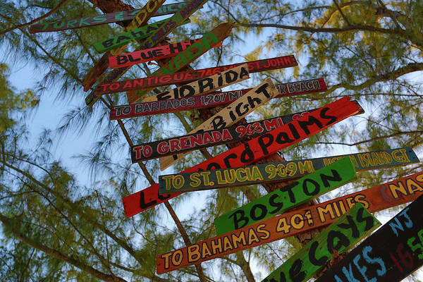 Tropical Directions Art Print