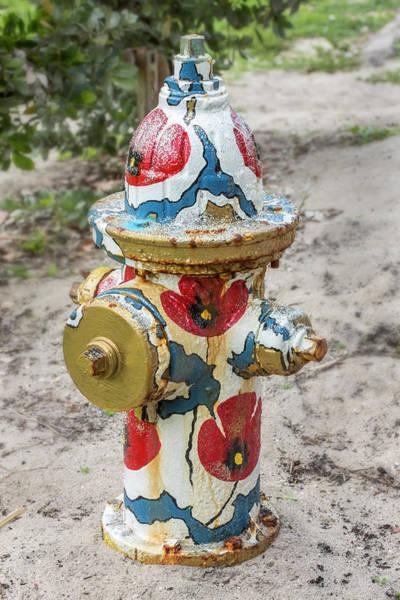 Wall Art - Photograph - Tropical Fire Hydrant by Iris Richardson