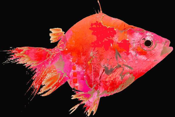 Wall Art - Digital Art - Tropical Fish On Black by Nancy Merkle